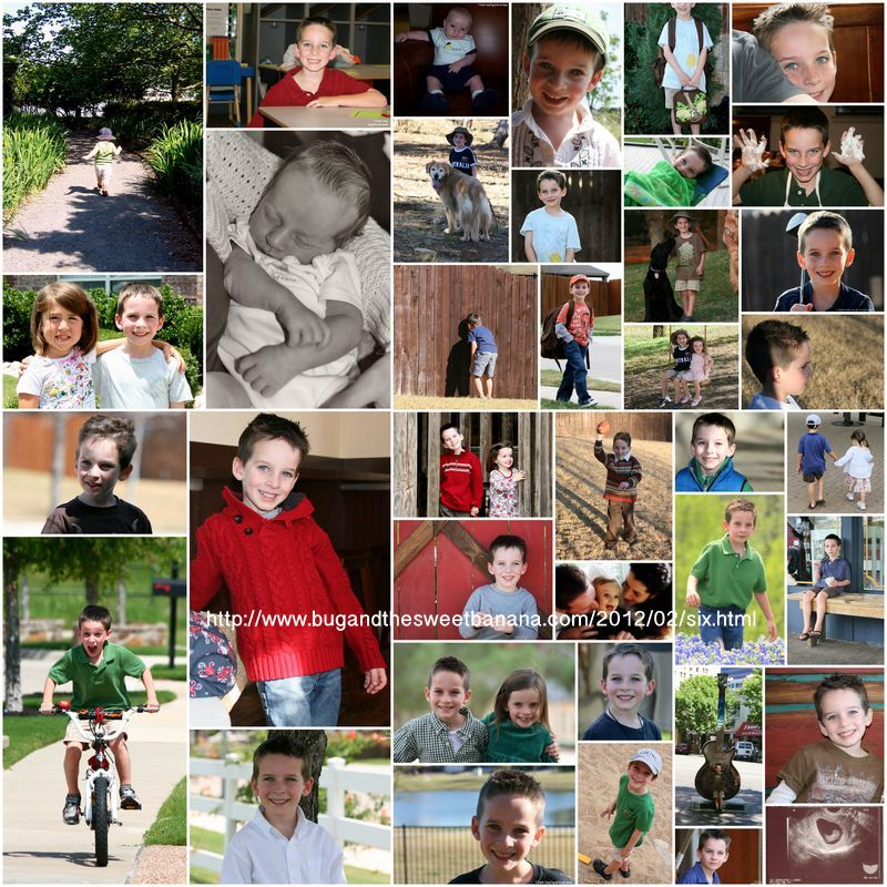Connor collage.wm